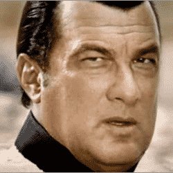 Is Steven Seagal secretly endorsing Viagra and payday loans? His website suggests so