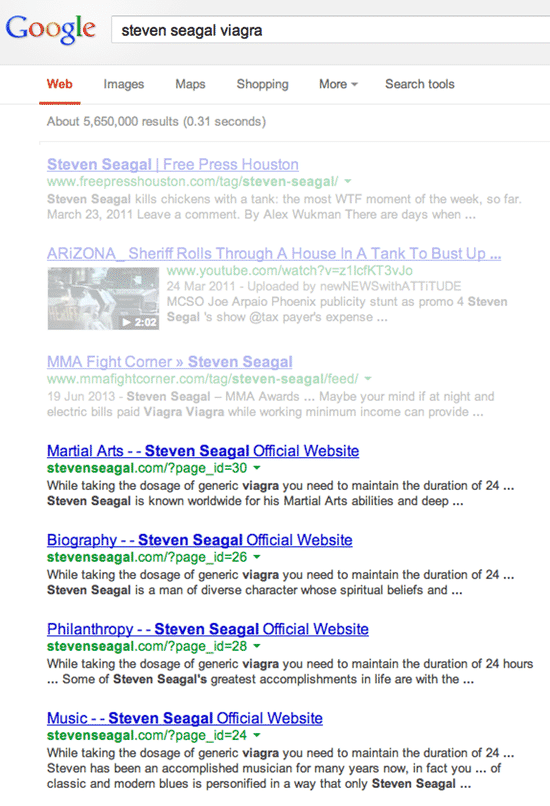 Steven Seagal search results