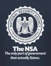 The other NSA