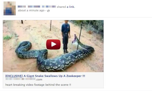Giant snake Facebook scam