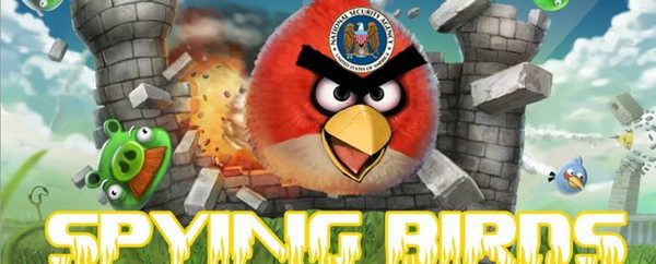 Spying Angry Birds