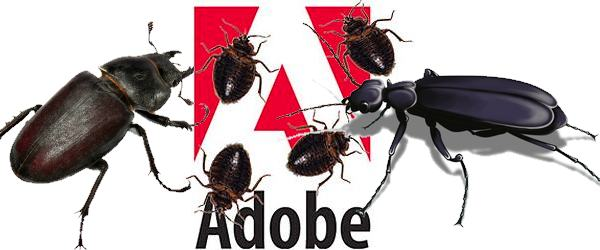 Adobe security bugs