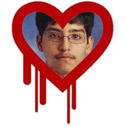 Heartbleed: Teenager charged after Canadian taxpayer hack