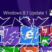 Windows 8.1 Update problem