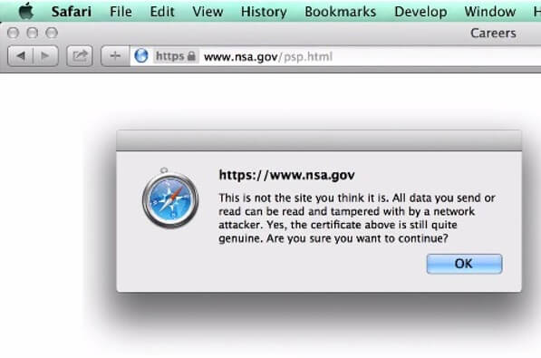 NSA website, mid-FREAK