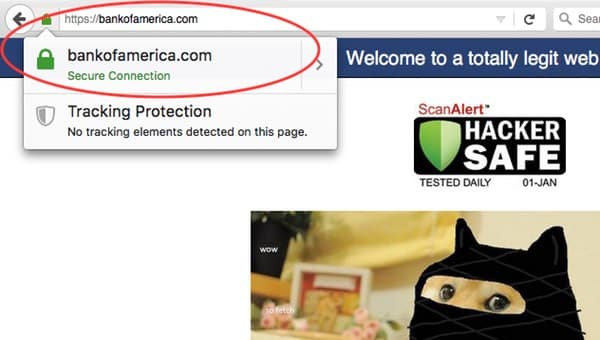 Bogus Bank of America website