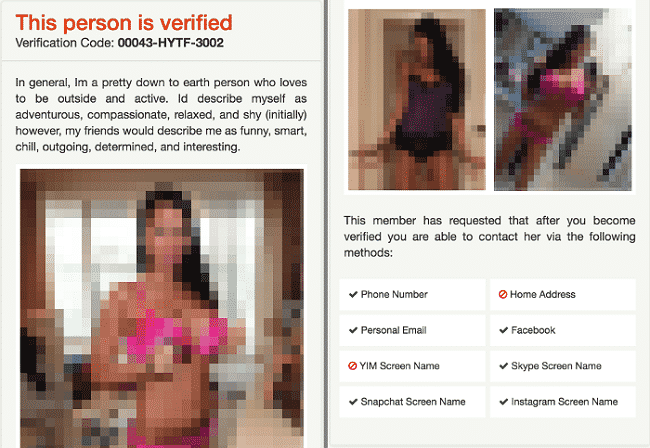 Fake profile on Tinder Safe Dating website (image altered to fit all elements into a single image)