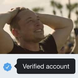 Another wave of Elon Musk bitcoin scams spread by verified Twitter accounts