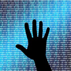 The Collection #1 data breach – what you need to do about it