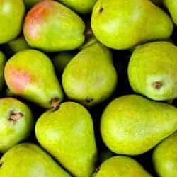 Poisoned PEAR. PHP extension repository download infected for up to six months
