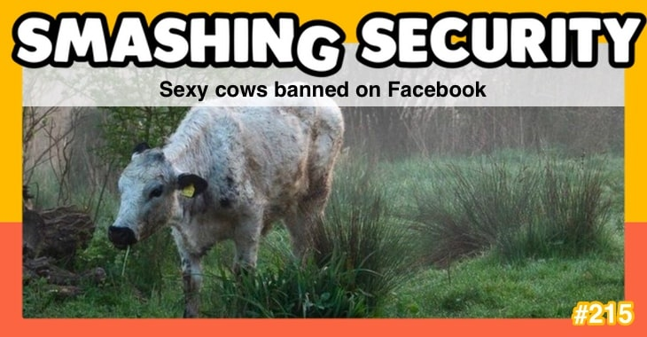 Smashing Security podcast #215: Sexy cows banned on Facebook